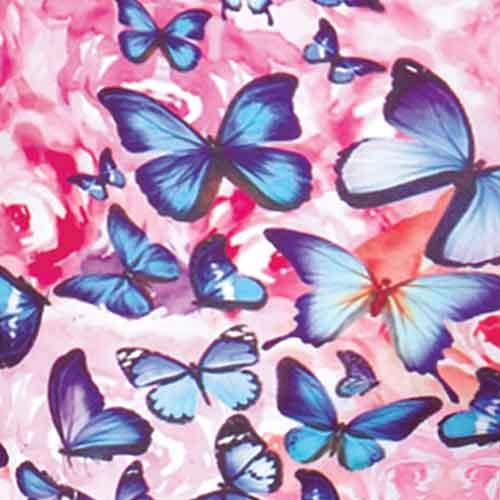 Purple Stripe/Rainbow Butterfly