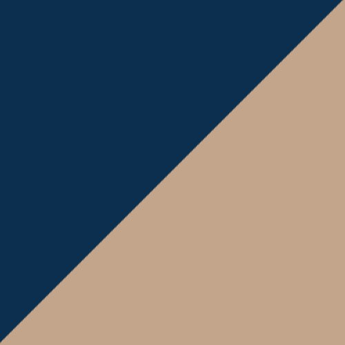 Navy/Vegas Gold
